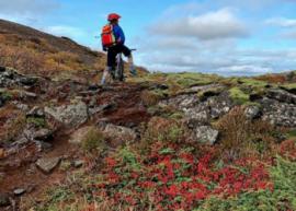 fjallahjólaferð bikecompany